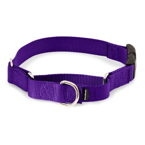 petsafe collar martingale collars with snap buckle by petsafe grp pqc