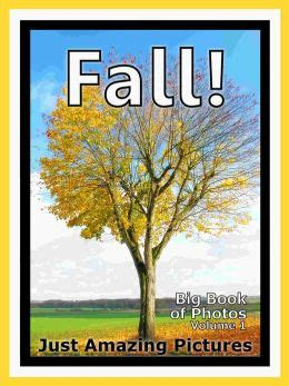 earth fall book one volume 1 books just fall photos big book of photographs pictures of