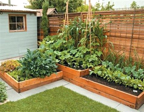 backyard vegetable garden design ideas shining backyard