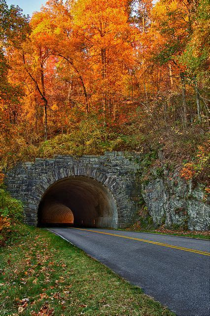 best section of blue ridge parkway 17 best images about north carolina is my home on