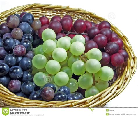 imagenes de uvas en hd cesta de uvas foto de archivo imagen de paja verde