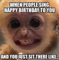 Funny Meme Generator Pictures - best 25 birthday memes for guys ideas on pinterest