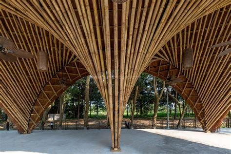 pavillon englisch flamingo pavilion bamboo architecture