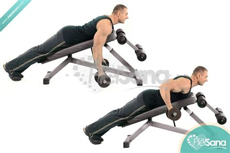 dumbbell bench row reverse grip incline bench two arm dumbbell row
