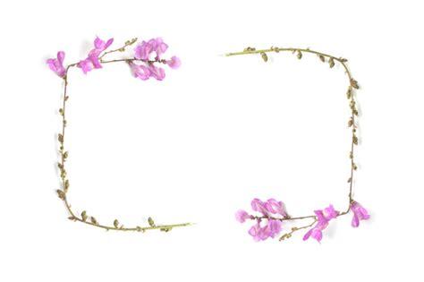 cornice gratis cornice di fiori rosa e verdi scaricare foto gratis