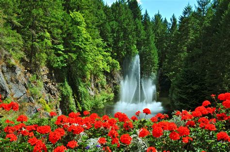 Amazing Remarkable Best Flowers In The World Wonderful World Best Flower Gardens In The World