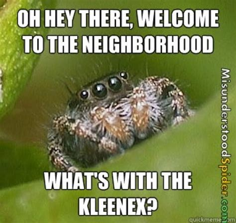 Meme Spider - the best of the quot misunderstood spider quot meme 19 pics