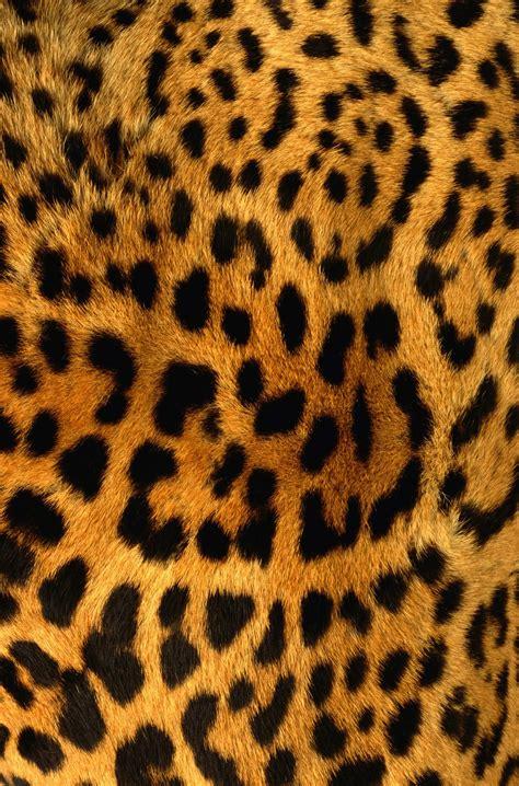 leopard skin texture art iphone case iphone case covers