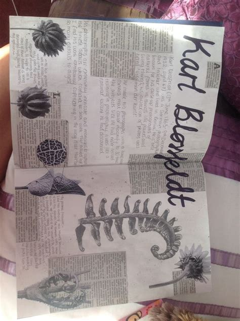 Karl Blossfeldt Forms Gcse Sketchbook Critical