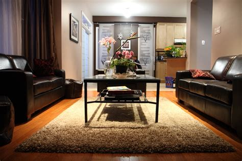 shaggy rugs for living room classic living room with shag rug carpet gallery photo 3