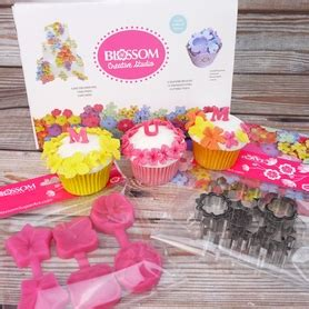Promo Cake Decorator With 8pc Moulds cake decorating supplies cake decorations
