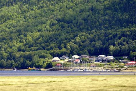 bateau mouche fjord navettes maritimes du fjord l anse saint jean
