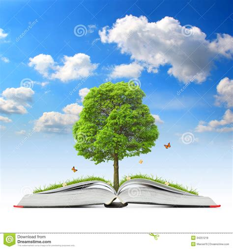 the tree picture book open book with tree and grass stock illustration image