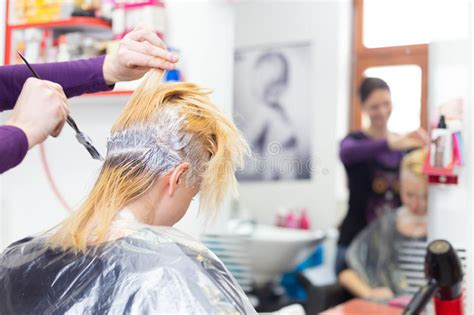 salon ct specialize in hair color hairdresser salon woman during hair dye stock photo
