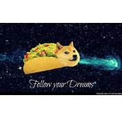 LittleFun  Follow Your Dream Doge