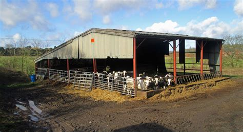 Building A Farm Shed by Potential In Farm Buildings Halls