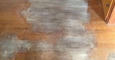 Removing dog urine stains from hardwood floors   Hometalk