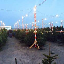 christmas tree lots in san franciso delancey tree lot 10 photos 18 reviews trees embarcadero