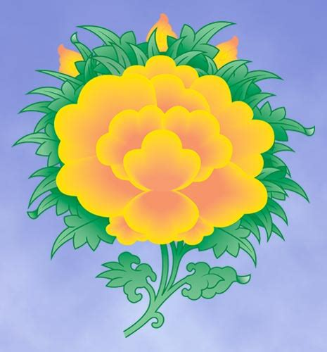 buddhist symbol lotus flower lotus flower meaning in buddhism new autocars news