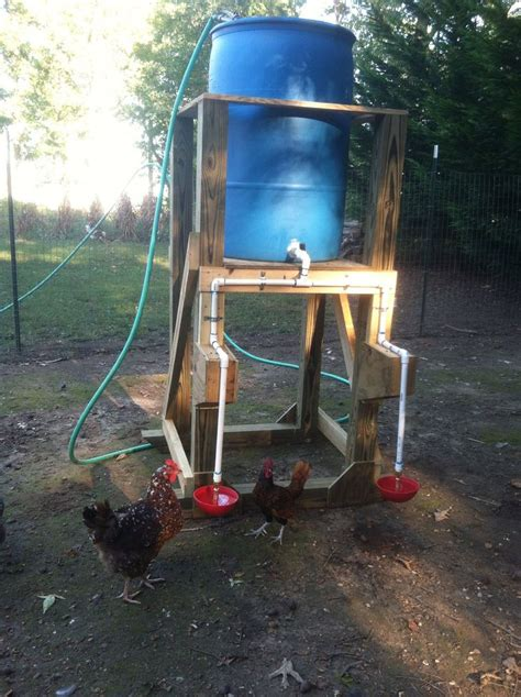 Chicken Feeders Automatic automatic chicken waterer animals pets stuff