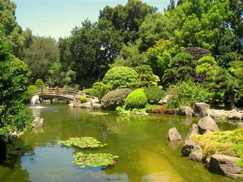 San Mateo Japanese Garden by 404 Page Not Found