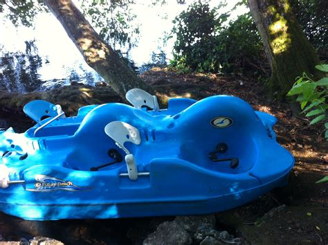 paddle boat rentals seattle paddle boat in greenlake to duck island stuff to do in