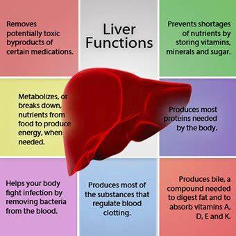 liver disease liver disease symptoms signs treatment