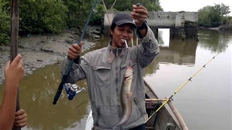 mancing ikan sembilang  kuala tanjung youtube