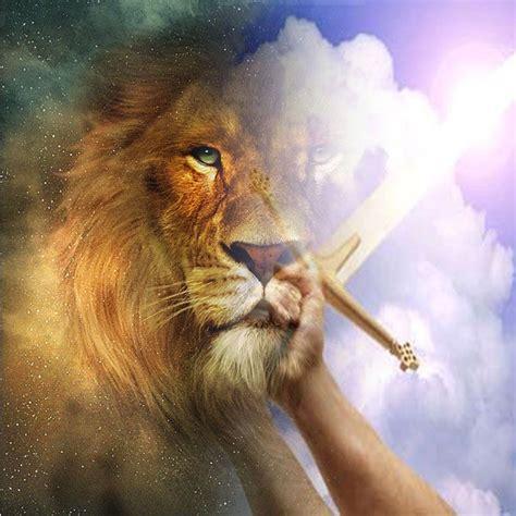 imagenes de leones y aguilas 7 best images about leones on pinterest animales the