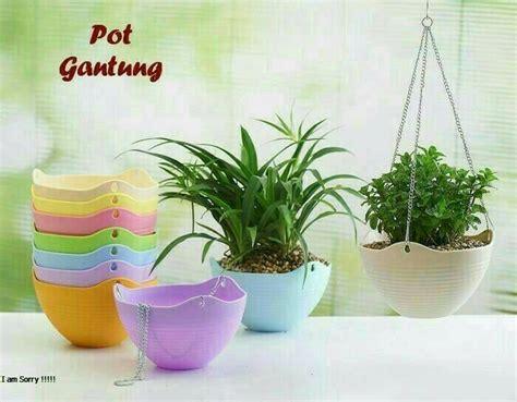 pot gantung asrikan depan rumah  tanaman gantung