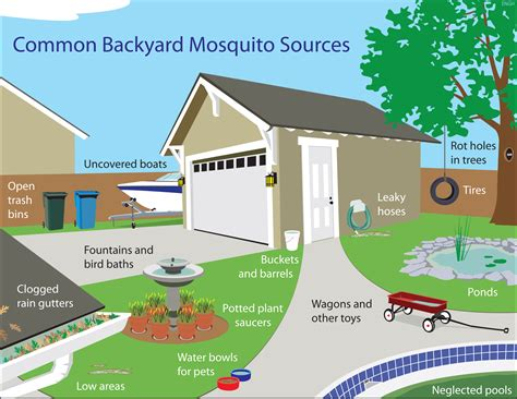 how to rid backyard of mosquitoes gainesville tx official website drain