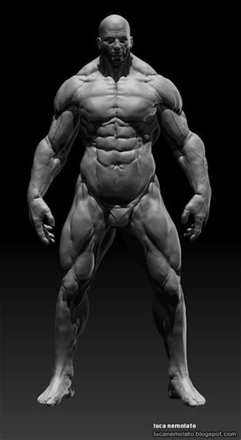 download image man injects synthol with muscles pc android iphone 505304937d84a o jpg imagem jpeg 350 215 640 pixels draw