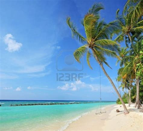 google images beach 17 best images about tropical islands to live on on