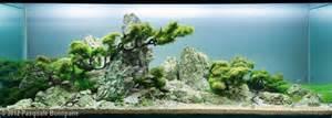 aquascape designs products images