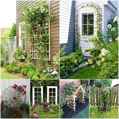 Garden Supply Arbor 15 Unique Trellis Ideas For Your Home S Garden Interior