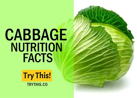 Cabbage Medicinal And Cosmetic Value by Top 10 Cabbage Health Benefits And Nutrition Facts