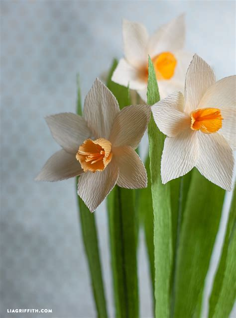 Paper Daffodils - make your own crepe paper daffodils lia griffith