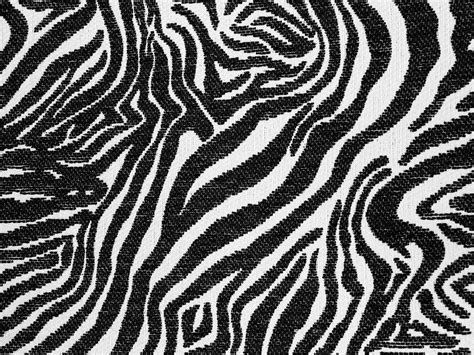 zebra pattern texture fabric texture zebra print cloth design black white