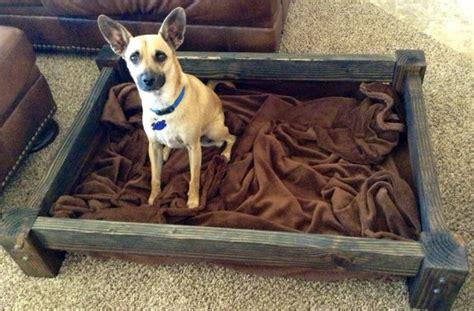 dog digging bed items similar to digging dog bed on etsy