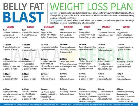 weight loss spreadsheet google docs beautiful google docs calendar