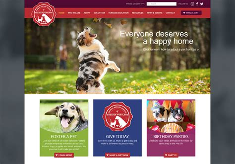 pattern auf website 50 cute dog adoption websites kittens cute wallpapers