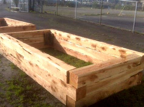 pressure treated wood for raised beds how to build raised garden beds with restoration juniper