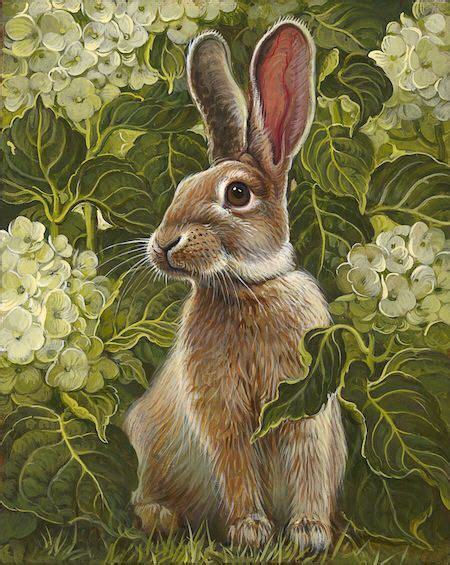 Armchair Treasure Hunts The 25 Best Hare Ideas On Pinterest Jack Rabbit Wild