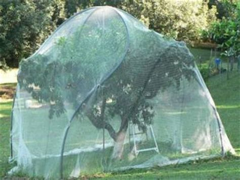 tree covers fruit cage netting comes in knotless and extruded poly netting