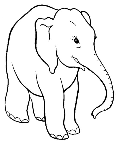 girl elephant coloring pages cute elephant coloring pages coloring home
