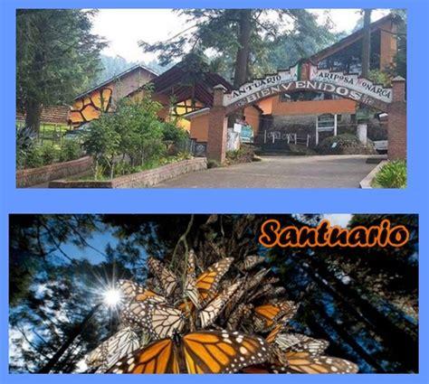 imagenes de santuarios naturales santuario de la mariposa monarca