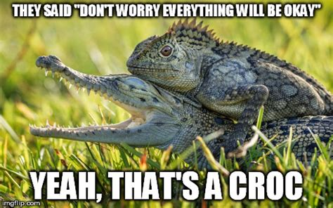 Reptile Memes - hitching can be dangerous imgflip