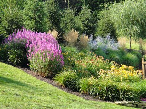free landscaping central ohio landscape maintenance columbus professional