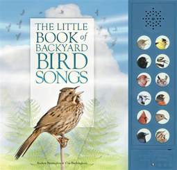 discovering backyard bird songs anythink libraries