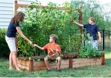 vegetable garden bed design vegetable home garden plant choice important maintain